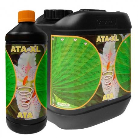 XL 5 L ATA