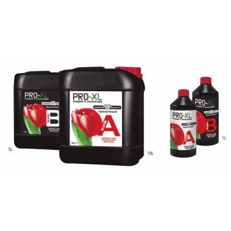 BLOOM A&B PRO-XL, 5 litros