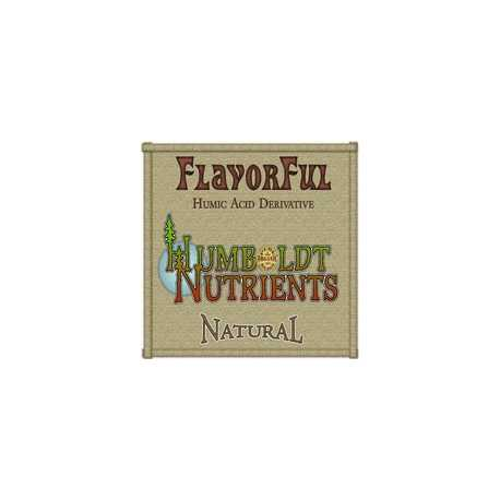 FlavorFul  476ML