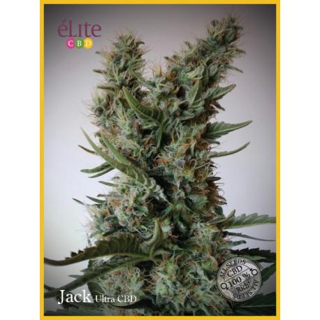 JACK-ULTRA (7) AUTO CBD