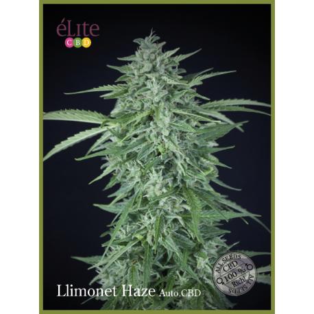 LLIMONET HAZE (7) AUTO CBD