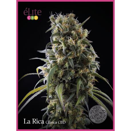 LA RICA (3) CBD