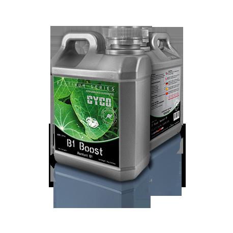 B1 BOOST 250 ML CYCO
